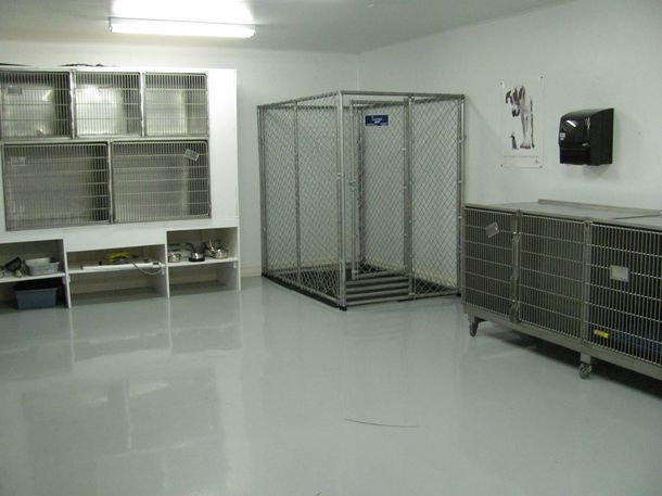 Countryside Veterinary Hospital - various cages